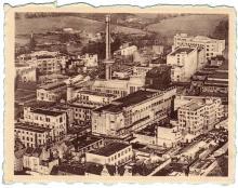 De Gevaert-fabrieken even na de tweede wereldoorlog