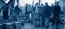 studiedag over visserij